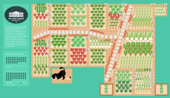 the-first-garden_50291495641c1_w1136